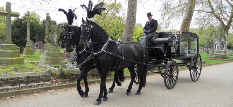 Mortons Funeral Directors horse drawn hearse